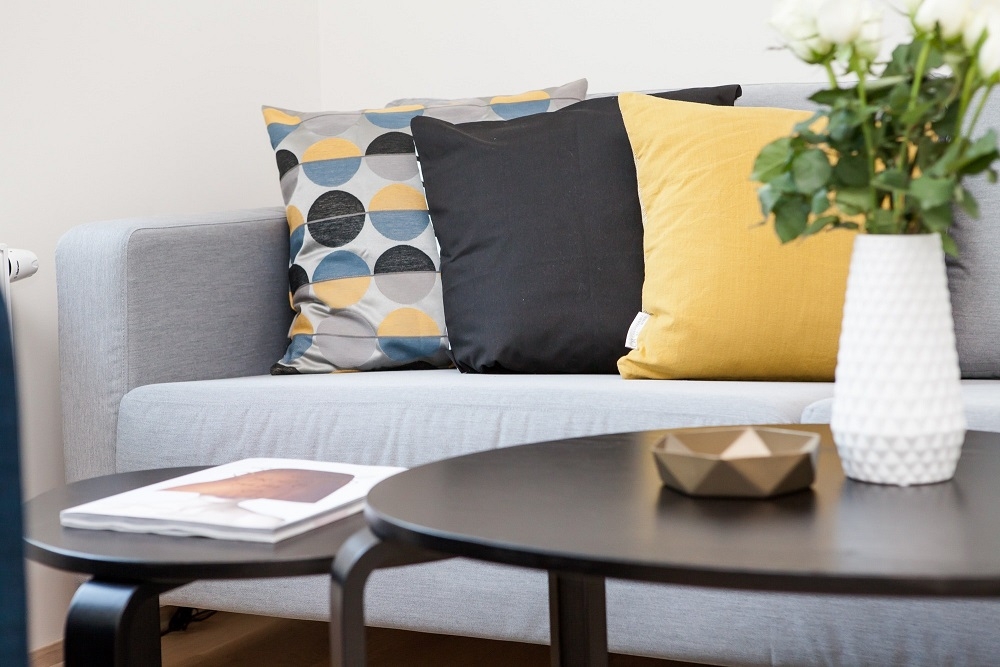couch and cushions